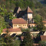 Copsamare guesthouse Transylvania - hotel