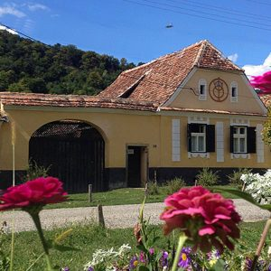 Copsamare guesthouse - Yellow house